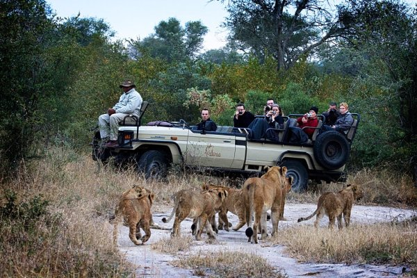 South-Africa-safaris
