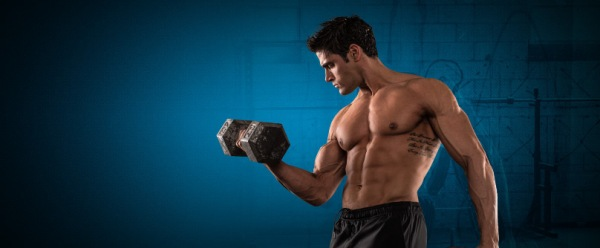 sports-nutrition-and-workout-support-header
