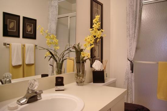bathroom_sink_flickr_paragon_apartments